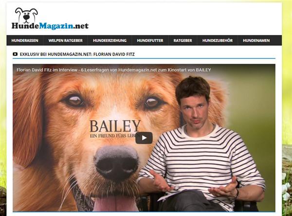 hunde blog