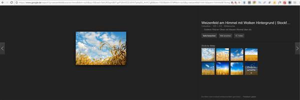 Neue Google Bildersuche führt zu Traffic Verlusten bei Webseitenbetreibern. Screenshot: Google, Abgebildetes Foto von Colourbox